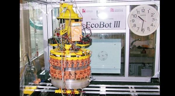 Crean robot que genera su propia energía