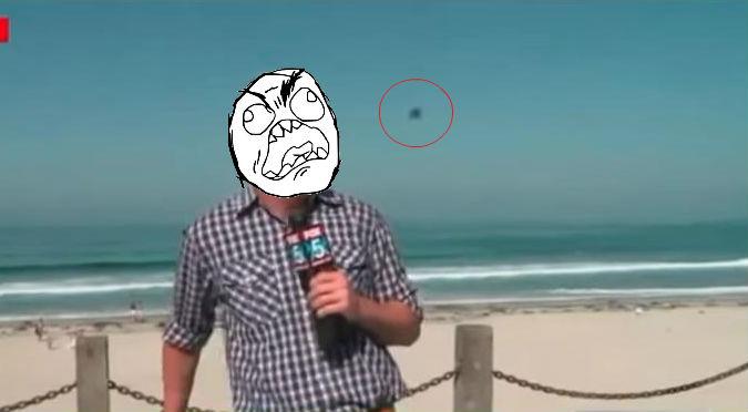 ¡La cara que puso! Reportero se asusta al ver a insecto gigante – VIDEO
