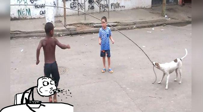 ¡Muy inteligente! Este perro ayuda a unos niños a saltar la soga – VIDEO