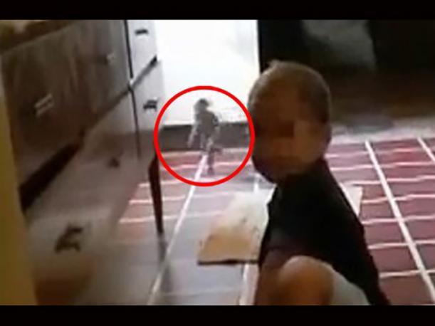 ¡Alucinante! Mira el video de un duende corriendo por un una cocina
