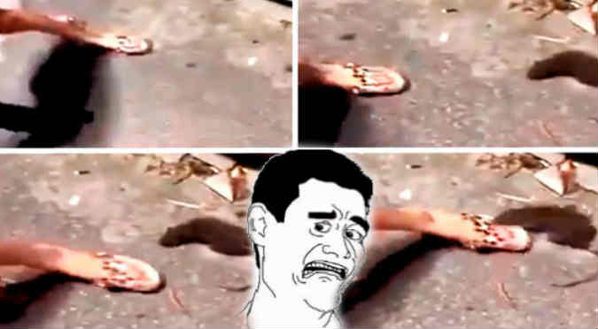 YouTube: Pensó que el roedor estaba muerto y su dedo quedó así