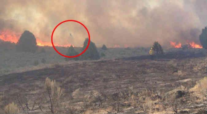 Facebook: Este fantasma apareció en medio de un incendio