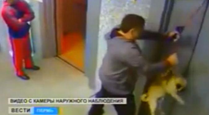 YouTube: Perro se atascó en un ascensor y casi muere decapitado