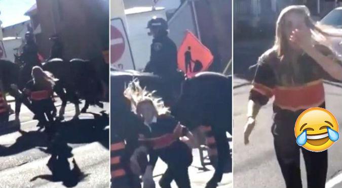 Twitter: Caballo recibió una nalgada y no se quedó atrás - VIDEO