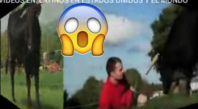 YouTube:  Toro actuó de esta manera al ver a un hombre 'tirado'