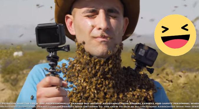 YouTube: Más de 3.000 abejas posaron sobre su rostro ¿Cómo quedó?