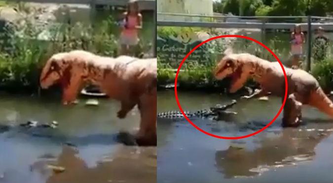 'Dinosaurio' se enfrenta a cocodrilo y su reacción fue épica (VIDEO)