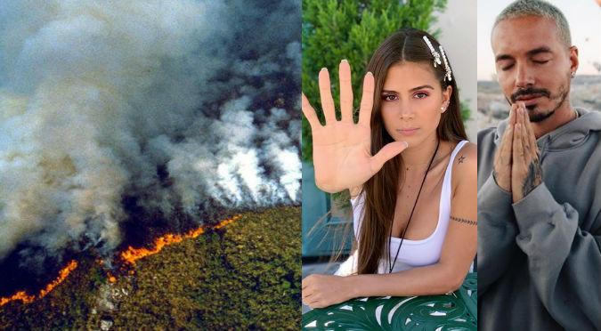 Incendios en el Amazonas: Artistas se unen para salvar el pulmón del mundo (VIDEO)