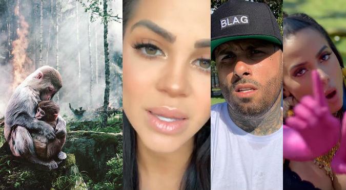 Anitta, Natti Natasha y Nicky Jam dan duro mensaje a la humanidad por incendios en el Amazonas (VIDEO)