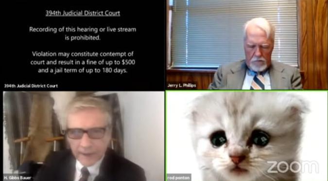 Abogado se conectó a una audiencia judicial con un filtro de Zoom activado: